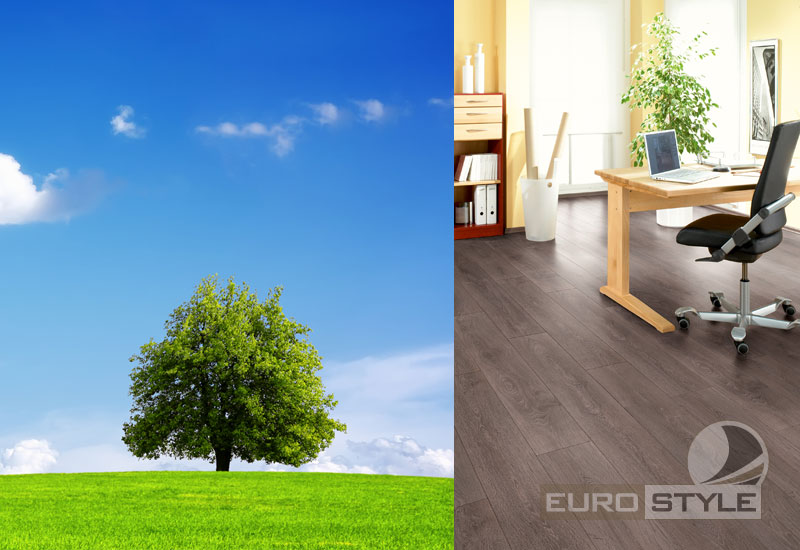 Environment Friendly Laminate Flooring
