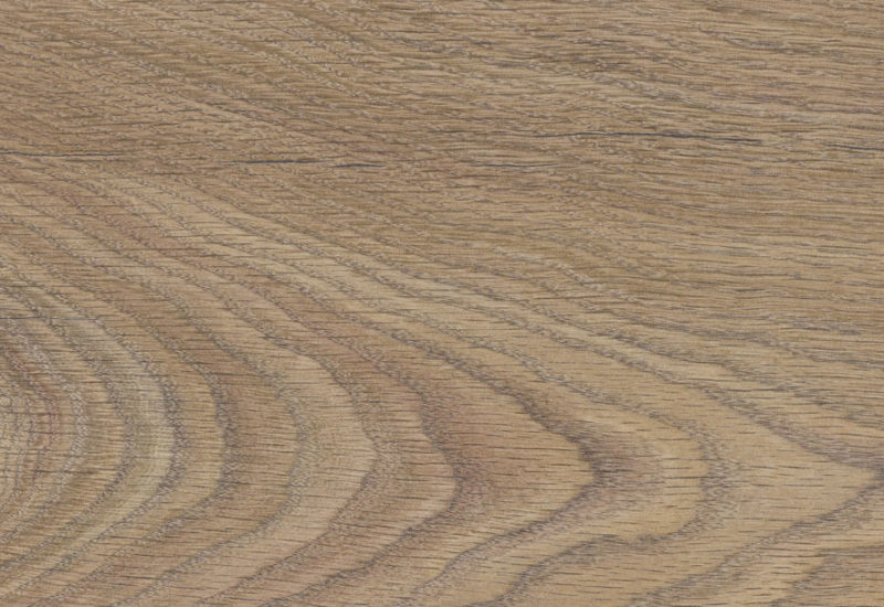 Renaissance Oak Vintage Longboard Laminate